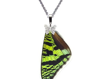 Real Butterfly Wing Necklace (Sunset Moth Forewing - N005)
