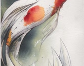 8x10 Koi - Original Watercolor