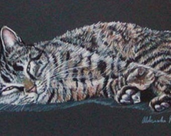 Colored Pencil Resting Tabby Cat Drawing