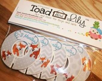 CLOSET DIVIDERS Mr. Fox in Orange, Grey and Aqua Boys Bedroom and Baby Nursery Art Decor CD0017