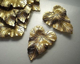 12 large brass rippled leaf charms
