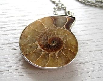 SALE - Lovely Caramel Brown Ammonite Fossil Pendant