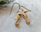 Raw Brass And Nubrass Seahorse Earrings
