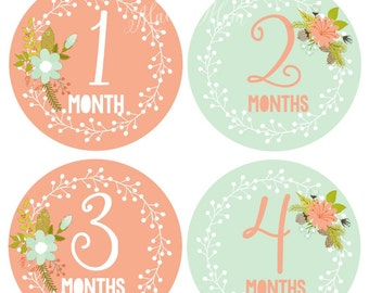 FREE GIFT, Baby Girl Month Stickers, Baby Monthly Stickers, Photo Prop Milestone Bodysuit Mod Floral Wilderness Style GIFT