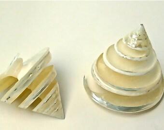 """Beach Decor - Spiral Cut Pearl Trochus Shell - 2.5""""-3"""" seashell seashells shells bulk shells sea shell sea shells"""
