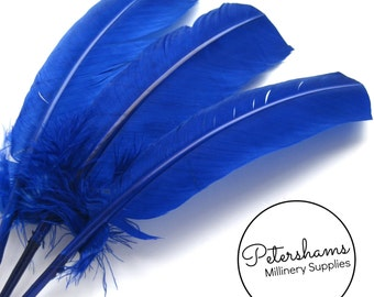 3 Turkey Quill Feathers for Millinery, Hats & Fascinators - Royal Blue