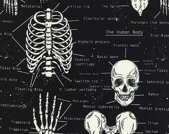 Halloween Glow In The Dark Fabric by Timeless Treasures Skeleton Anatomy Lesson print