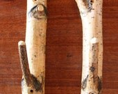 Rustic Birch Branch Hooks Set of 2 Naturally Finished