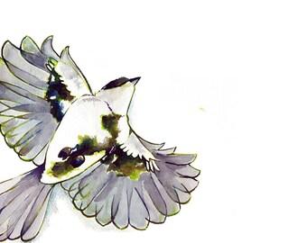 Watercolor Painting Chickadee Art Print Flying Chickadee Song Bird Striking Black and White Giclee Art Print Bird Art Bird Wall Art Decor