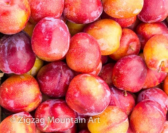 Red Plums fine art matted photograph. Red Plums decor kitchen wall art.  Part of the Oregon Fruit series of fine art prints