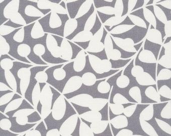Organic CANVAS - Cloud9 First Light Canvas - Branch Gray