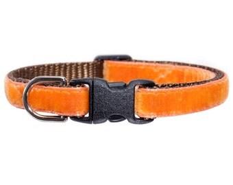 """Cat Collar - """"The Austin Pickles""""  - Orange Velvet"""