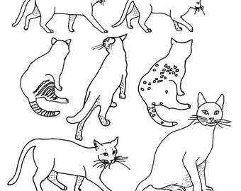 Cats Coloring Sheets Animals Instant Printable Download Color Page Gift