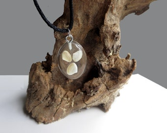 Three Sea Shell Pendant