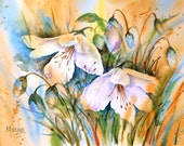 Watercolor of White Flowers With Buds and Blue by Colorado Artist Martha Kisling