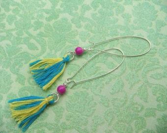 Multi Colored Tassel Earrings