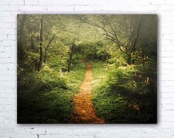 The Beckoning - fine art photograph, woodland forest photography, enchanted forest, nature photography, hiking, green, summer woodland decor