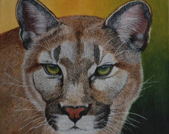 Lion Painting - Mountain Lion - Puma, Cougar, wildlife, nature, original acrylic canvas painting, fur, large cats, jungle cat