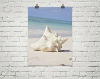 Seashell Poster, Conch Shell Wall Art, Beach Poster, Beach Wall Art, Beach Print, Large Beach Wall Art, Large Beach Photography Poster