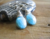 SALE!  Sleeping Beauty Turquoise, Silver Earrings - 20% OFF