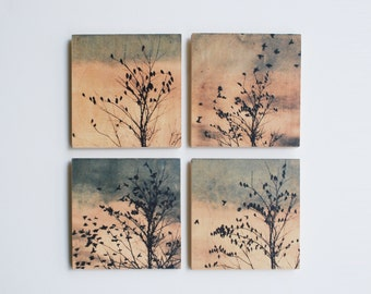 set of 4, Art on birch panel, ready to hang art, 88 editions Dove series