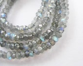 150 Labradorite Facet Rondelle Beads 3mm. 13 inches :gs7043