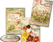 Vintage botanical flower, spring floral plants, roses,  - Gift tags, ACEO , Printable Digital Collage Sheet to Download and Print (N206)