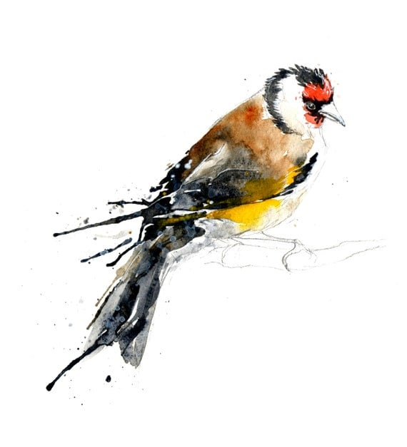 Goldfinch II Painting - Original Artwork Watercolour Illustration
