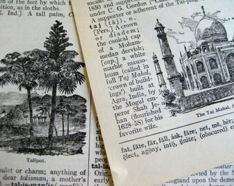 Vintage dictionary pages ~ book sheets