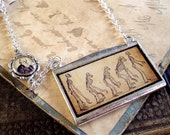 Darwin Necklace - Evolution - Charles Darwin Jewelry in Bronze or Silver
