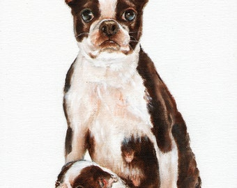 New Original Oil DOG Portrait Painting BOSTON TERRIER Art Puppy Artist Signed Artwork