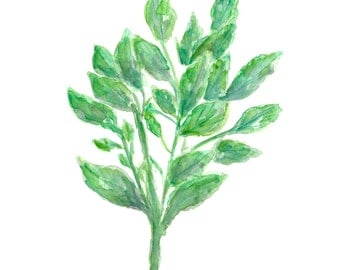 Watercolor herb painting, herb art, peppermint plant, original watercolor painting, watercolor plants, herb watercolor, kitchen art, 8X10