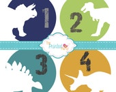 Monthly Baby Stickers - Baby Shower Gift and Photo Prop - dinosaurs - 303