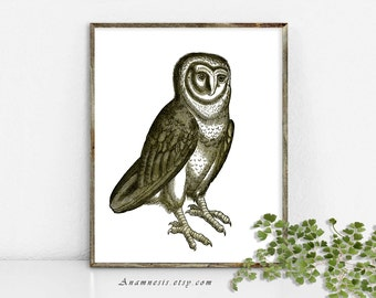 Owl Art Print - OWL IN SEPIA - Instant Digital Download - printable antique bird illustration for framing, totes, pillows, crafts, wall art