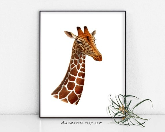 GIRAFFE PORTRAIT - digital download - printable antique illustration retooled by Anamnesis for prints, totes, pillows, aprons, cards etc.