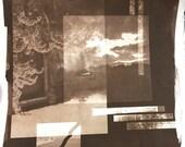 Van Dyke Brown Print, Negatives Collage