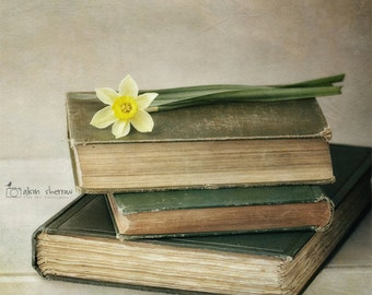 Book Photography, Rustic Wall Art,  Library Decor, Vintage Books Art Print, Green & Yellow Bedroom Decor | 'Spring Reading'