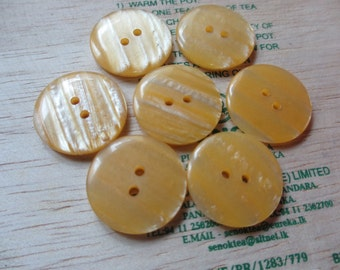 12 Large Vintage Shiny Light Yellow Tone 2 Hole Plastic Round Button - 23 mm