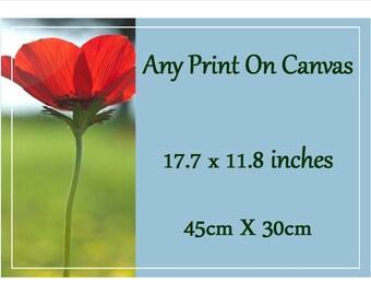 Canvas Photo Print - 45cm X 30 cm - 18 inch X 12 inch