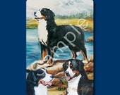 Bernese Mountain Dog - Deck of Playing Cards