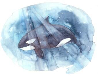 PRINT 5 x 7 Be Free Orca Whale watercolour ocean whale decor print