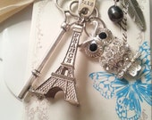 Gorgeous Owl CHouette à Paris, Tour Eiffel choice: KeyChain, Necklace or Car Charm - Rhinestones Vintage Key Silver, Nature
