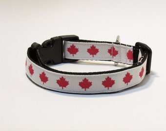 Canada dog collar, FREE SHIPPING, dog collar, adjustable dog collar, canada, canadian