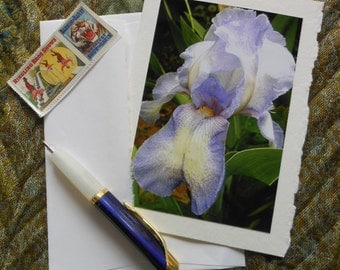 Light Blue Iris Flower Photo Blank Notecard with Deckle Edge - #IRIS006