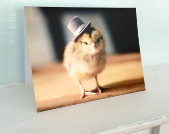 Notecard Chick in A Top Hat Chicken Stationary Baby Animal Photograph Cute Bird in A Hat Greeting Card