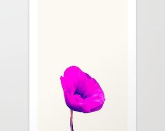 FINE ART PRINT Photography Poppy Poppies Flower Art Print