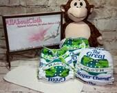 Cloth diaper, hybrid fitted, The Great Cloth Diaper Change *licensed item*, GCDC, Cloth diaper cover, cloth diaper insert, diaper pattern