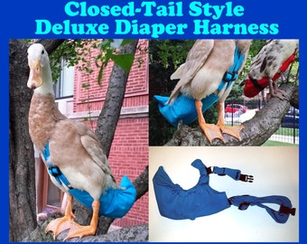 """Deluxe """"Snap"""" CLOSED TAIL Diaper Harness for Pet Fowl Made-to-Order"""