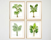 Royal Palm Print Set, Tropical Decor, Palm Wall Art, Beach House Gallery, Beach Living Room Art, Tropical Botanical Prints