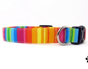 Rainbow stripes dog collar & cat collar with optional bell